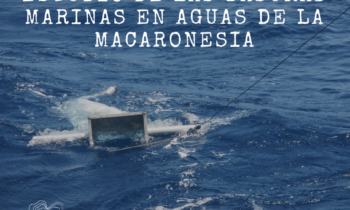 ESTUDIO DE LAS BASURAS MARINAS EN AGUAS DE LA MACARONESIA Madeira. 11-12/08/2017