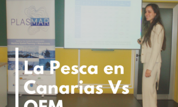 LA PESCA EN CANARIAS FRENTE A LA OEM Gran Canaria. 4/09/2017