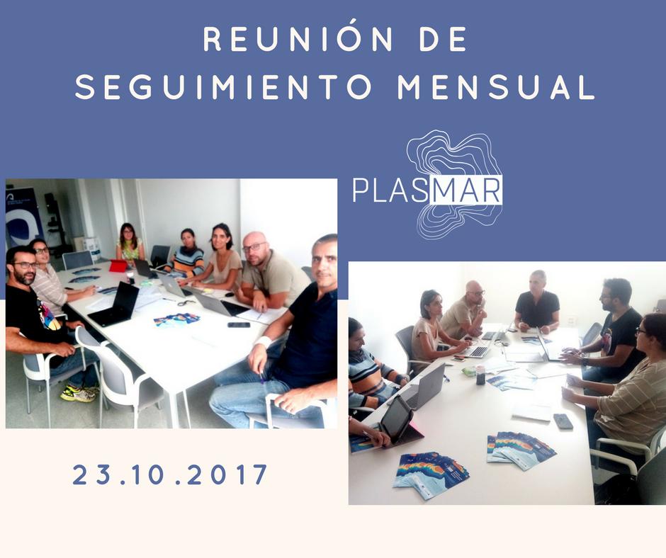 Reunión de seguimiento mensual del proyecto plasmar
