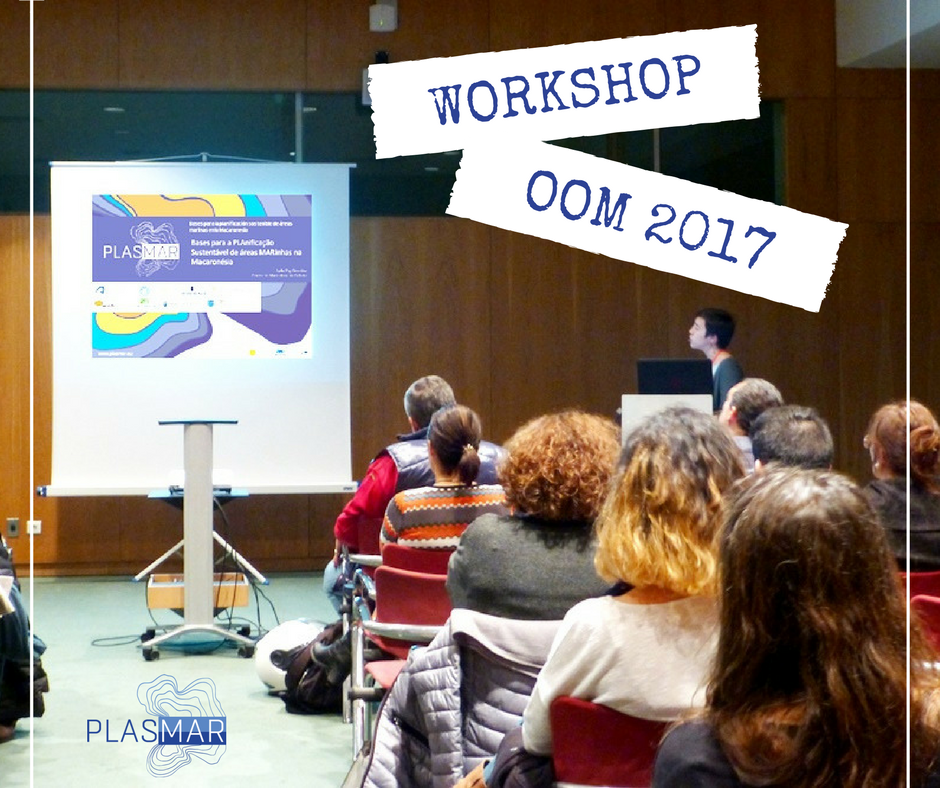 Plasmar Workshop OOM 2017