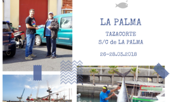 ENCUESTAS A PIE DE PUERTO EN TAZACORTE Y S/C DE LA PALMA LA PALMA. 26-28.03.2018
