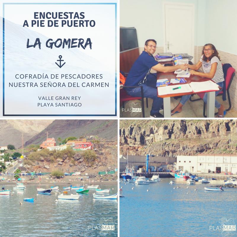 Encuestas en La Gomera