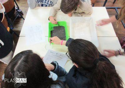 PLASMAR Madeira OOM Escolas