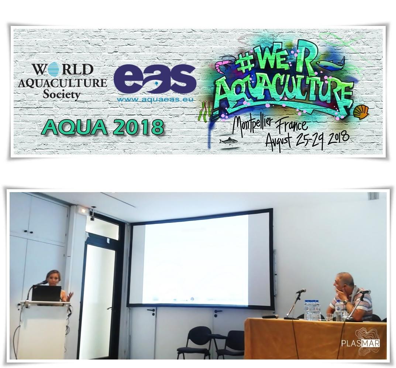 World Aquaculture Conference