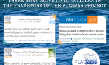 THREE MORE SCIENTIFIC ARTICLES IN THE FRAMEWORK OF THE PLASMAR PROJECT